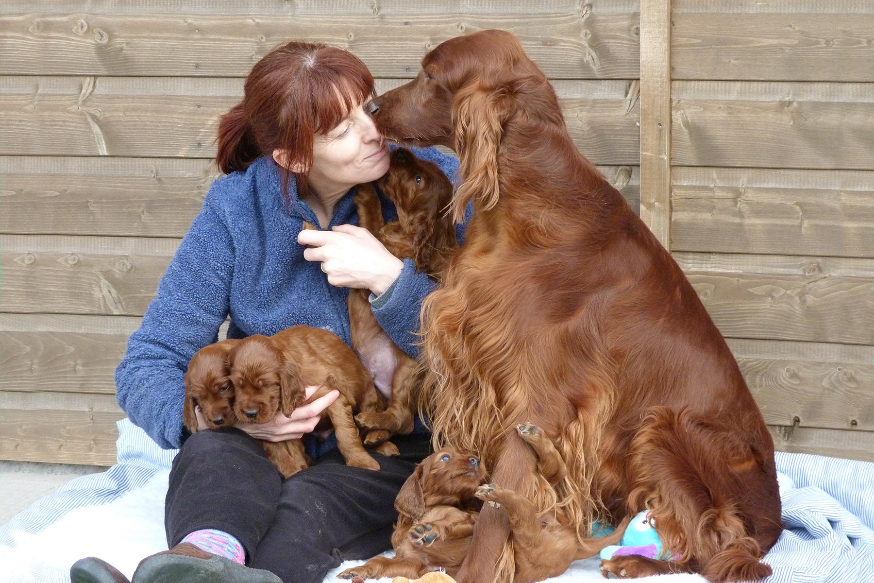 SunnyPeachy pups 145